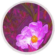 Round Beach Towel featuring the photograph Color 2 by Pamela Cooper
