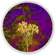 Round Beach Towel featuring the photograph Color 5 by Pamela Cooper