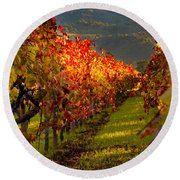 Color On The Vine Round Beach Towel