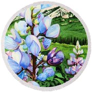 Colorado Summer Blues Close-up Round Beach Towel