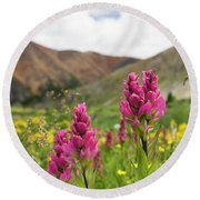 Colorado Wildflowers In The Backcountry Round Beach Towel