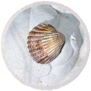 Colored Seashell  Round Beach Towel