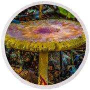 Colorful Mushroom Round Beach Towel