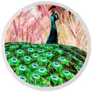 Round Beach Towel featuring the photograph Colorful Peacock by Matt Harang