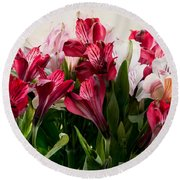 Colorful Peruvian Lillys Round Beach Towel