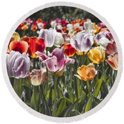 Colorful Tulips In The Sun Round Beach Towel