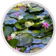 Colorful Water Lily Pond Round Beach Towel