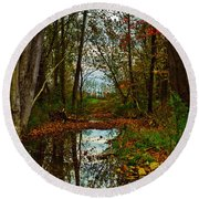Round Beach Towel featuring the photograph Colors Of Fall by Kristi Swift