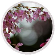 Round Beach Towel featuring the photograph Colors Of Spring - Cherry Blossoms by Jordan Blackstone