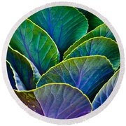 Colors Of The Cabbage Patch Round Beach Towel