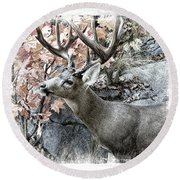 Round Beach Towel featuring the photograph Columbia Blacktail Deer by Aaron Berg