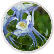Columbine-2 Round Beach Towel by Charles Hite