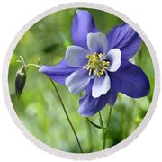 Columbine Card  Round Beach Towel