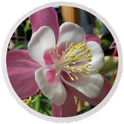 Round Beach Towel featuring the photograph Columbine by Caryl J Bohn