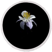 Round Beach Towel featuring the photograph Columbine by David Andersen