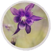 Columbine Flower Round Beach Towel