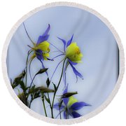 Round Beach Towel featuring the photograph Columbines by Peter v Quenter