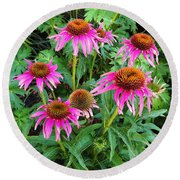 Round Beach Towel featuring the photograph Comely Coneflowers by Meghan at FireBonnet Art