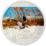 Windy Seagull Landing Round Beach Towel