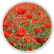 Commemorative Poppies Round Beach Towel