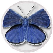 Common Blue Butterfly - Polyommatus Icarus Butterfly Naturalistic Painting - Nettersheim Eifel Round Beach Towel