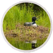 Common Loon Nesting Round Beach Towel