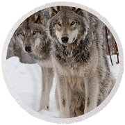 Companions Round Beach Towel by Wolves Only