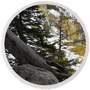 Round Beach Towel featuring the photograph Composition At Lower Falls by Michele Myers