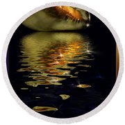 Round Beach Towel featuring the photograph Conch Sparkling With Reflection by Peter v Quenter