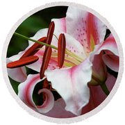 Consider The Lily Round Beach Towel