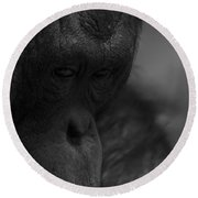 Contemplating Orangutan Round Beach Towel