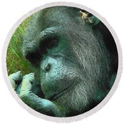Round Beach Towel featuring the photograph Contemplative Chimp by Rodney Lee Williams
