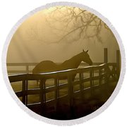 Coosaw Early Morning Mist Round Beach Towel