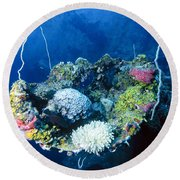 Corals On Ship Wreck Round Beach Towel