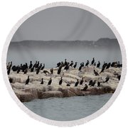 Round Beach Towel featuring the photograph Cormorant Island by Debra Martz