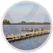 Cormorants And Seagulls On Old Dock Near Blackwater  National Wildlife Refuge Near Cambridge Md Round Beach Towel
