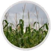 Round Beach Towel featuring the photograph Corn Field by Laurel Powell