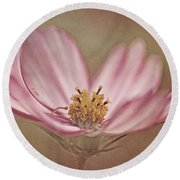 Round Beach Towel featuring the photograph Cosmos by Ann Lauwers