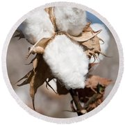 Cotton Bolls  Round Beach Towel