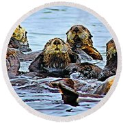 Couch Critters Round Beach Towel by Kristin Elmquist