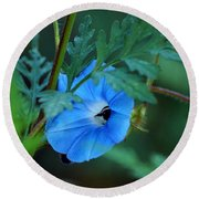 Country Blue Round Beach Towel