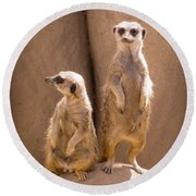 Couple Of Meerkats Round Beach Towel