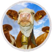 Cow Looking At You - Funny Animal Picture Round Beach Towel