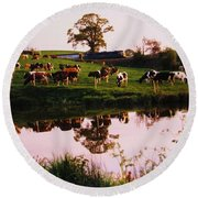 Cows In The Canal Round Beach Towel