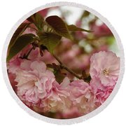 Round Beach Towel featuring the photograph Crab Apple Blossoms by James C Thomas
