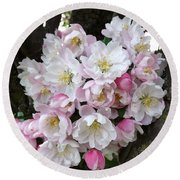 Crab Apple Blossoms Round Beach Towel