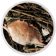 Round Beach Towel featuring the photograph Crab Shell by William Selander