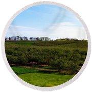 Crane Orchards Round Beach Towel by Michelle Calkins