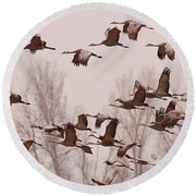 Round Beach Towel featuring the photograph Cranes Across The Sky by Don Schwartz