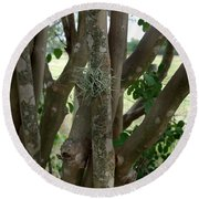 Crape Myrtle Growth Ball Round Beach Towel by Peter Piatt